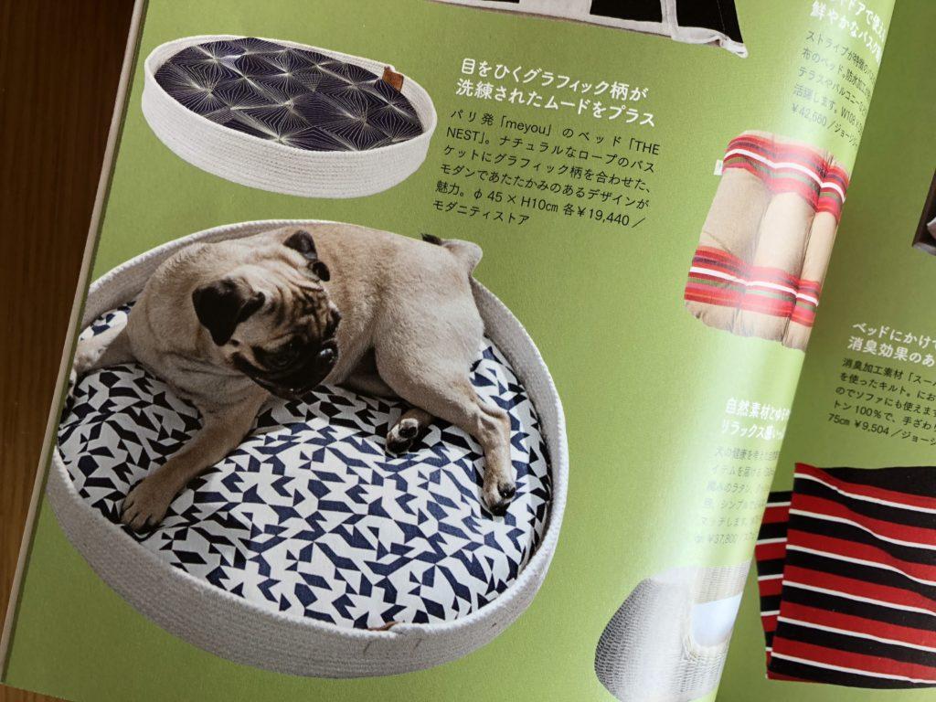 パグと犬用ベッド