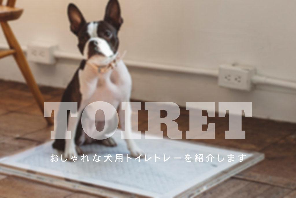 おしゃれな犬用トイレトレー